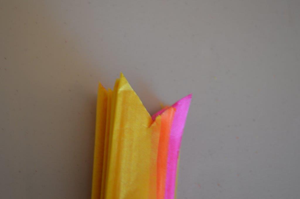 Tissue Poms 9