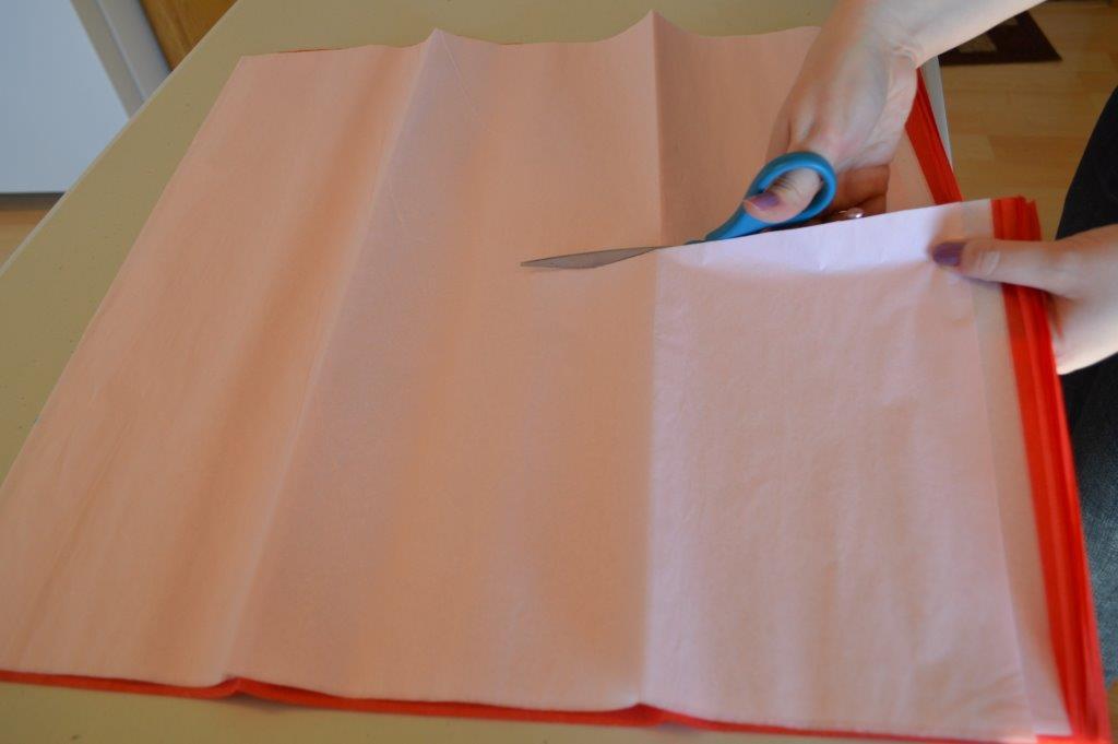 Tissue Poms 16