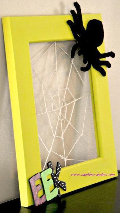 Spider Frame 5