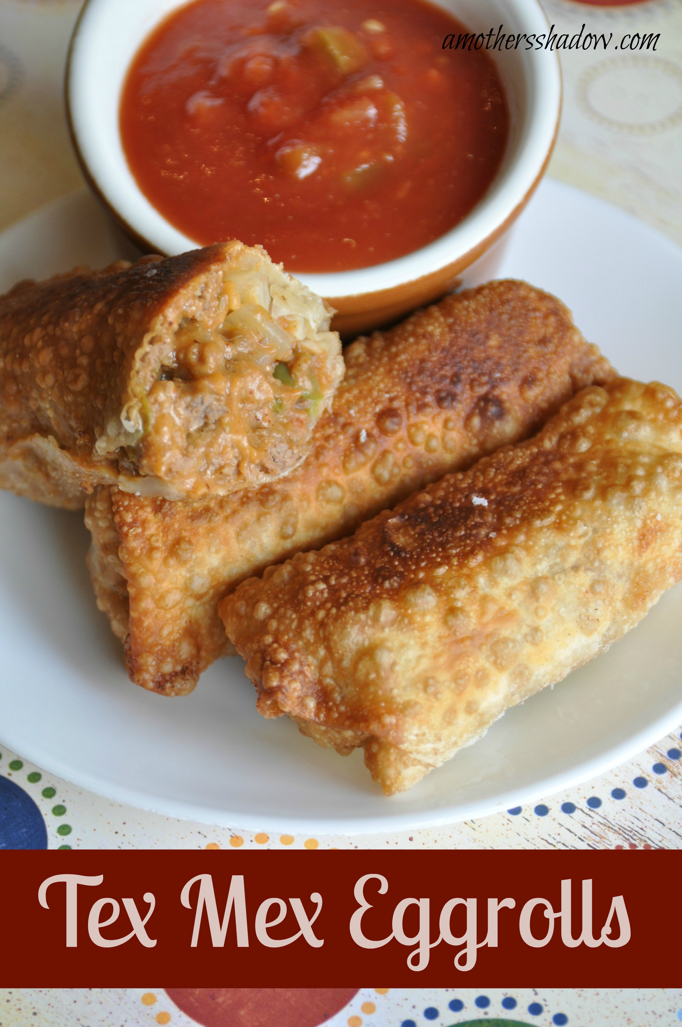 Deep Fried Tex Mex Wontons Great appetizer or meal