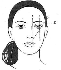 Eyelash illustration
