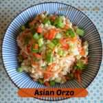 An oriental style bowl filled with a refreshing salad made with Orzo pasta, rotisserie chicken, fresh vegetables and a light refreshing dressing with a little spice from chili sauce and cool from Ranch dressing