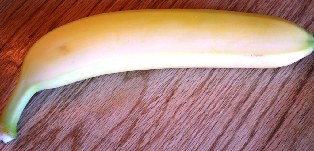 Roasted Banana Pudding