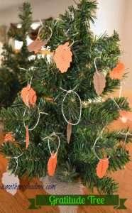 DSC_2003 - gratitude tree
