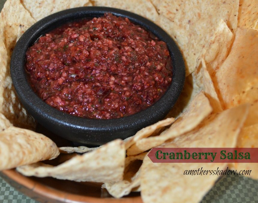 Fresh Cranberry Salsa