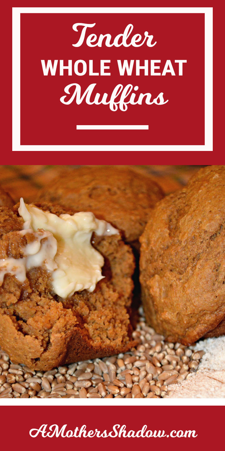 Tender and Moist Whole Wheat Muffins