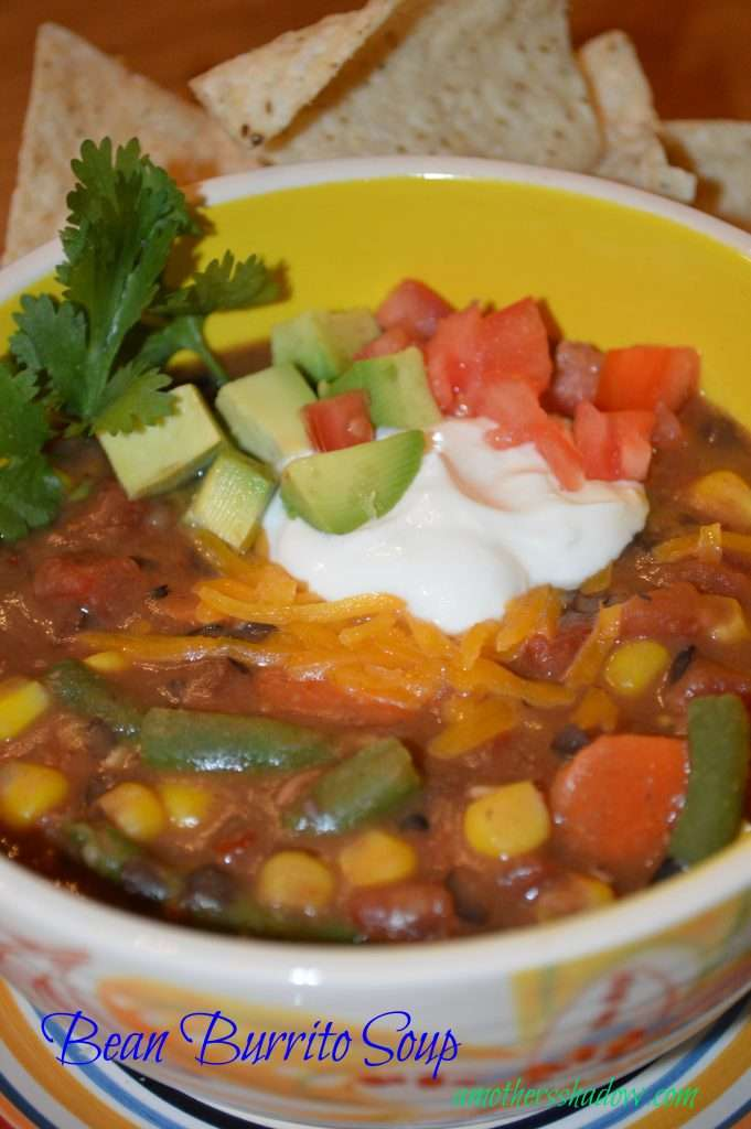 Bean Burrito Soup