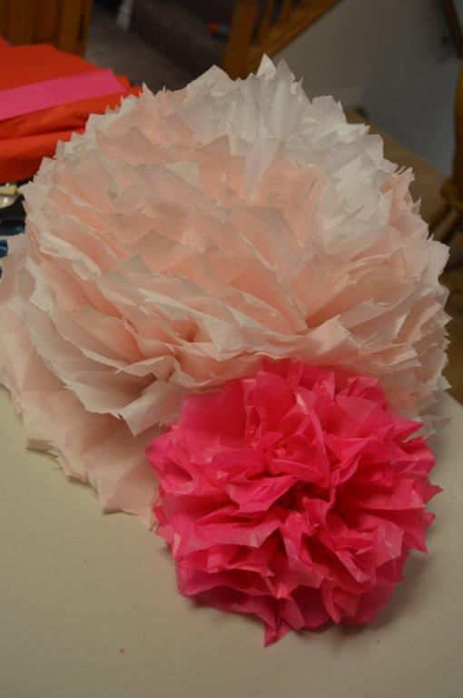 Tissue Poms 20