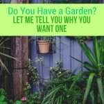 Do You Have a Garden? You NEED One!