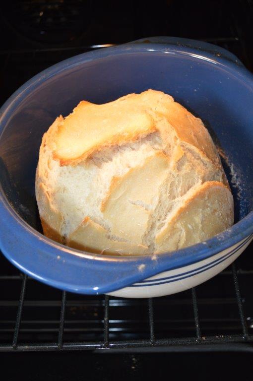 No Start Sour Dough Artisan Bread