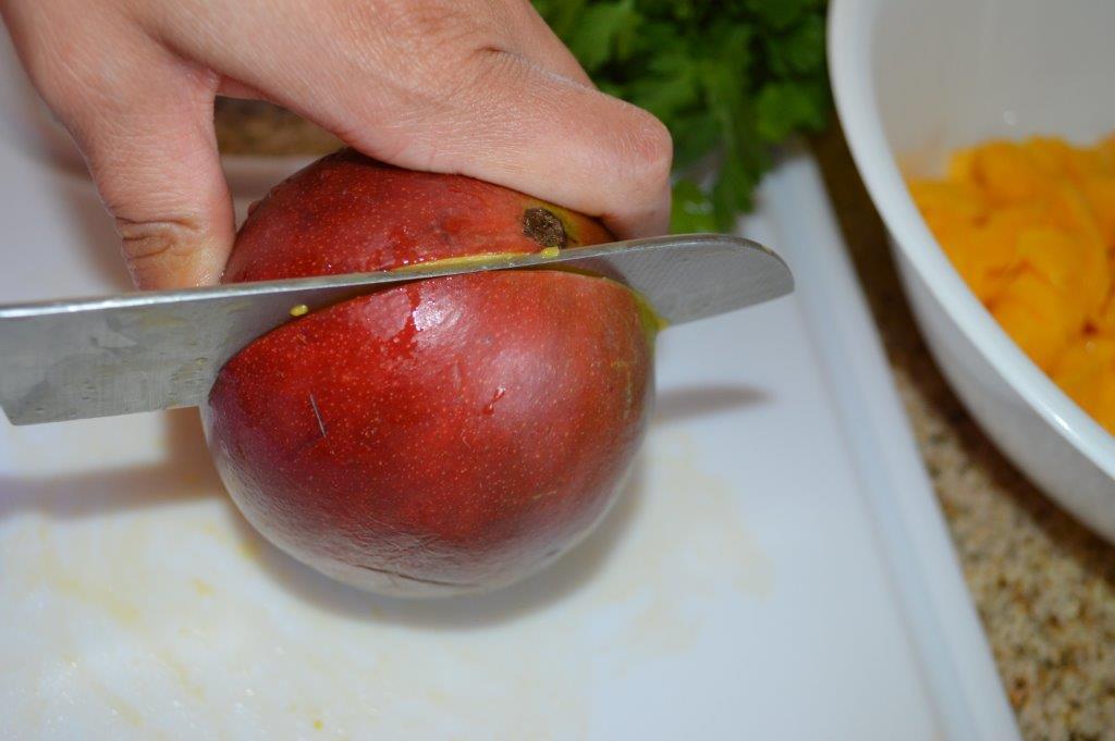 Tilapia with Fresh Mango Salsa 9