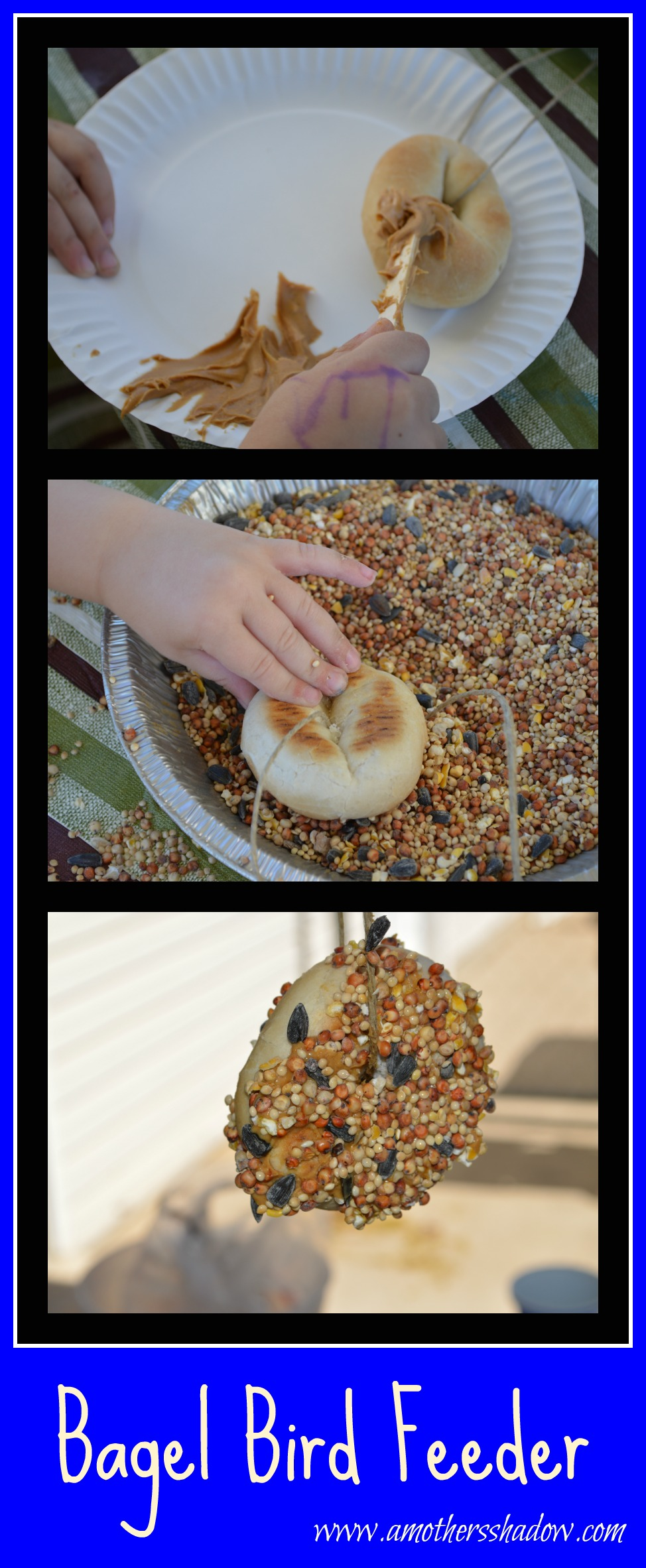 DIY Summer Bird Feeders