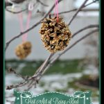 Homemade Winter Bird Feeder